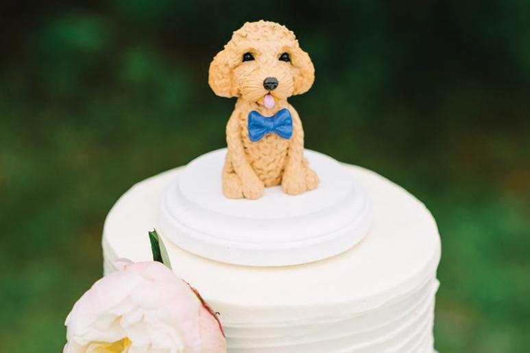 Animal de estimação: 5 maneiras de o incorporar no casamento